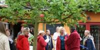 Besök i Kivik på Europakongressen