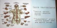 Nervsystem konferens 26